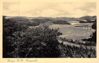 Ansichtkaart Bergen (NH) aan Zee Duingezicht 1938 HC8316