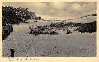 Ansichtkaart Bergen (NH) aan Zee In de duinen 1938 HC8317