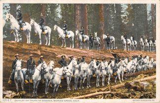 Ansichtkaart USA Cavalry on Trunk of Sequoia Merced Grove, California Militair Soldaten te paard Verenigde Staten Noord-Amerika HC8343