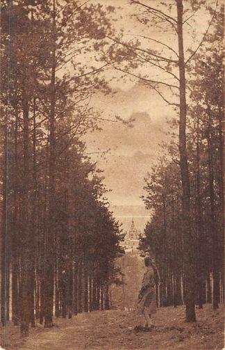 Ansichtkaart Beek (GD) Panorama op Beek vanaf den Ravenberg 1928 HC8370