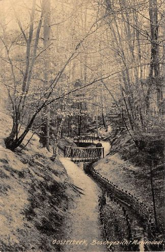 Ansichtkaart Oosterbeek bij Arnhem Boschgezicht Mariendaal 1907 HC8371