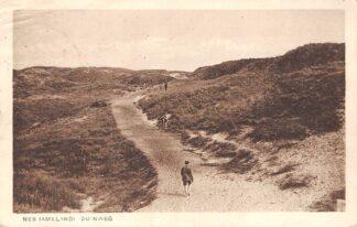 Ansichtkaart Nes Ameland Duinweg 1933 HC8428