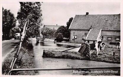 Ansichtkaart Berkenwoude Westeinde (nabij Dorp) 1963 Krimpenerwaard HC8505