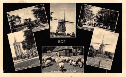 Ansichtkaart Ede Molens Rijksweg Kerk Gemeentehuis Schaapskooi 1955 HC8628