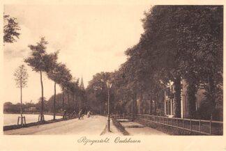Ansichtkaart Oudshoorn Rijngezicht Alphen aan den Rijn 1913 HC8651