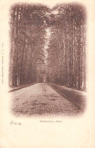 Ansichtkaart De Steeg Middachter Allee HC8689