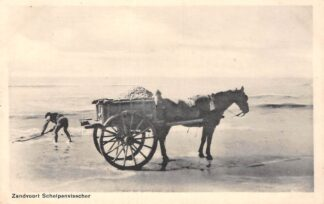 Ansichtkaart Zandvoort Schelpenvisscher 1937 Zee en strand Paard en wagen HC8756