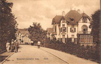 Ansichtkaart Santpoort Bloemendaalsche weg 1913 HC8773