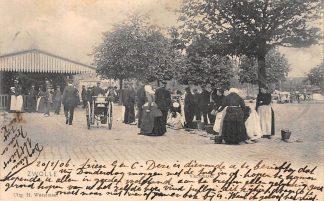 Ansichtkaart Zwolle Vischmarkt Markt Straatleven Volksleven 1906 HC8967