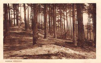 Ansichtkaart Heilig Landstichting 25 Berg Thabor Nijmegen HC9273