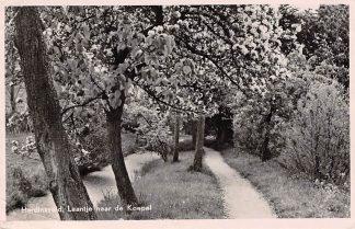 Ansichtkaart Hardinxveld - Giessendam Laantje naar de koepel 1954 HC9293