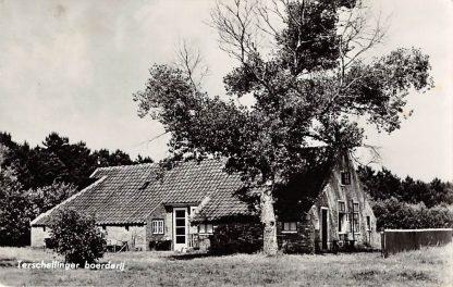 Ansichtkaart Midsland Terschelling Terschellinger Boerderij 1960 HC9404