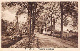 Ansichtkaart Noordhorn Friesche Straatweg 1932 HC9808
