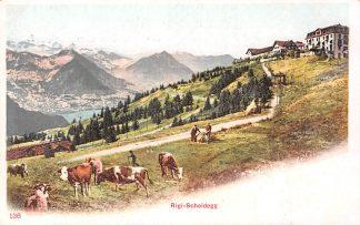Ansichtkaart Zwitserland Rigi-Scheidegg Alpen Schweiz Suisse Switzerland Europa HC9902