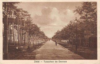 Ansichtkaart Zeist Tusschen de Dennen 1930 HC10708