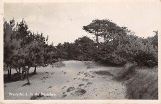 Ansichtkaart Westerbork In de Bosschen 1939 Drenthe HC10718