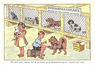 """Ansichtkaart Den Haag Wie geen echte rashond kan of wil betalen, ga bij Dierenbescherming een """"rasechte hond"""" halen Nederlandsche Vereeniging tot bescherming van dieren Fantasie HC11183"""