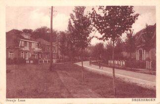 Ansichtkaart Driebergen Oranje Laan 1932 HC11313