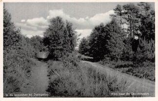 Ansichtkaart Dwingeloo Weg naar de Davidshoeve HC11326