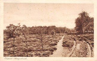 Ansichtkaart Elspeet Slingerbosch Veluwe 1929 HC11347