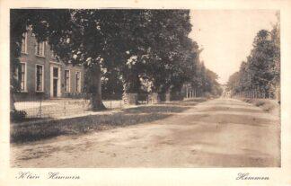 Ansichtkaart Hemmen Klein Hemmen 1919 Betuwe HC11602