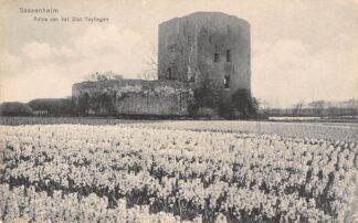 Ansichtkaart Sassenheim Ruïne van het Slot Teylingen Bloembollenvelden HC11642