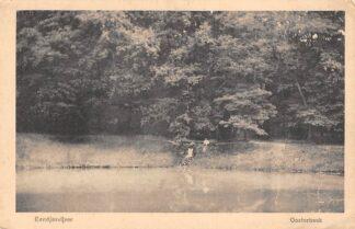 Ansichtkaart Oosterbeek bij Arnhem Eendjesvijver 1918 HC11666