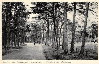 Ansichtkaart Driebergen Rijsenburg Arnhemsche Bovenweg 1940 HC11668