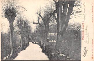 Ansichtkaart Meerkerk Laantje 1905 Alblasserwaard HC11758