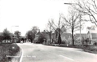 Ansichtkaart Schoonrewoerd vanaf Provinciale weg 1967 HC11938