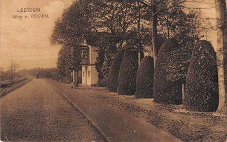 Ansichtkaart Leersum Weg naar Doorn HC11947