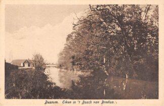 Ansichtkaart Bussum Eiken in 't Bosch van Bredius HC11991