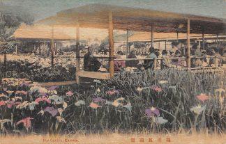 Ansichtkaart Japan Iris Garden Kamata Nippon Nippon Azië HC12043
