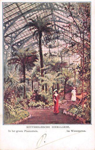 Ansichtkaart Rotterdam Diergaarde In het Groote Plantenhuis Kleinrondstempel Middelburg 1906 Zoo Dierentuin HC12450