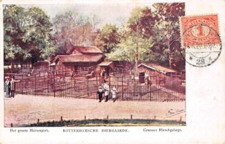 Ansichtkaart Rotterdam Diergaarde Het groote Hertenpark Zoo Dierentuin HC12452