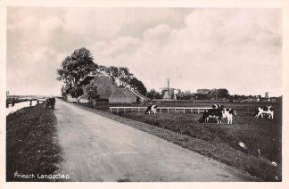 Ansichtkaart Harlingen Friesch Landschap met molen Boerderij en koeien in de wei 1939 HC12572