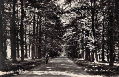 Ansichtkaart Zeist Koelaan Originele fotokaart 1945 HC12584