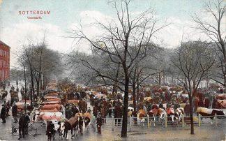 Ansichtkaart Rotterdam Veemarkt Koeien markt 1908 HC12695