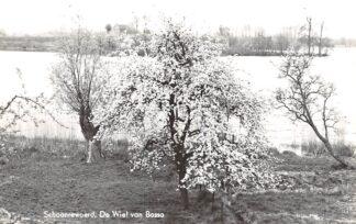 Ansichtkaart Schoonrewoerd De Wiel van Bassa HC12889