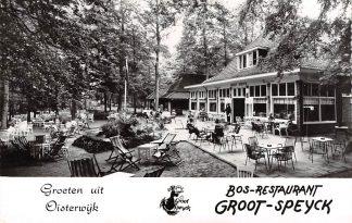 Ansichtkaart Oisterwijk Bos-Restaurant Groot-Speyck Reclame 1964 HC13078