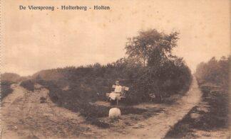 Ansichtkaart Holten De Viersprong Holterberg HC13104