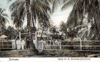 Ansichtkaart Suriname Ingang tot de Cocosnootvezel-Fabriek Zuid-Amerika Broedergemeente Zeist HC13126