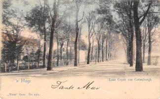 Ansichtkaart Den Haag Laan Copes van Cattenburgh 1903 Vivat No. 2376 HC13280