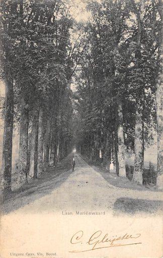 Ansichtkaart Beesd Laan Marienwaard 1906 Betuwe HC13879