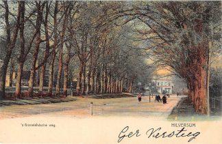 Ansichtkaart Hilversum 's-Gravelandsche weg HC13944