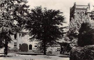 Ansichtkaart Oosterhout (NB) St. Catharinadal 1955 HC14566