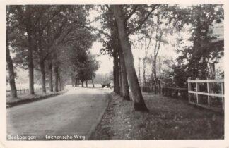 Ansichtkaart Beekbergen Loenensche Weg Apeldoorn HC14577