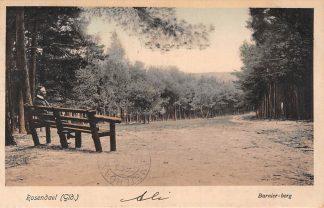 Ansichtkaart Rozendaal (GD) Barnier-berg 1916 HC15107