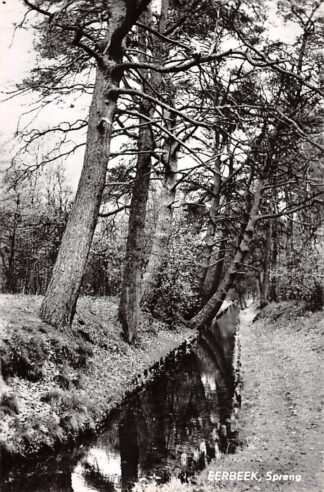 Ansichtkaart Eerbeek Spreng 1967 Veluwe HC15123