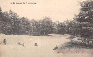 Ansichtkaart Appelscha In de duinen HC15138